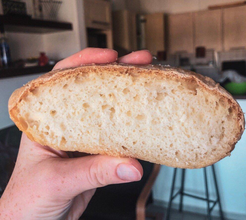 Gluten Free Sour Dough Starter